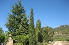 Landschaft Rioja Gebiet