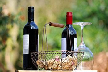 Wein Genuss La Rioja