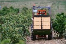 Traktor bei der Weinernte La Rioja